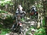 trail riding barmouth